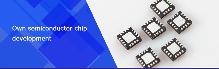 Own semiconductor chip development